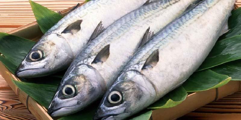 phun môi xong nên hạn chế ăn cá biển, hải sản